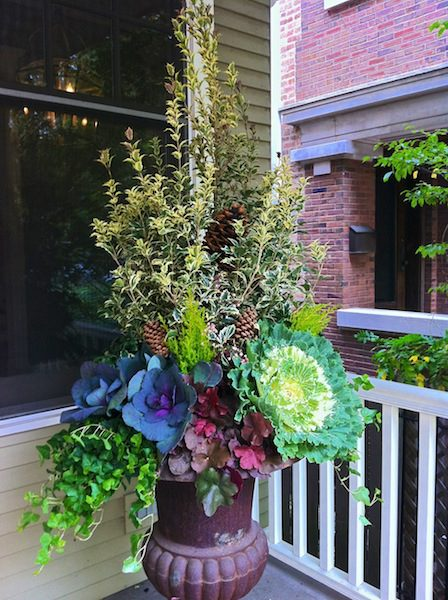 Fall - Chicago Landscaping