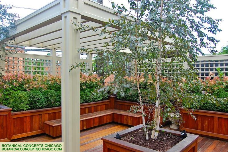 Chicago Landscaping Designer