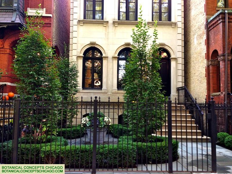 Beautiful Landscaping Chicago