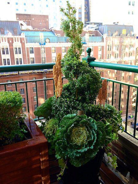 Tête-à-tête - Chicago Roof Deck Project