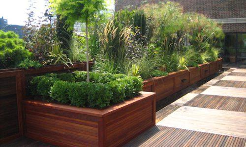 Summer Planting & Irrigation