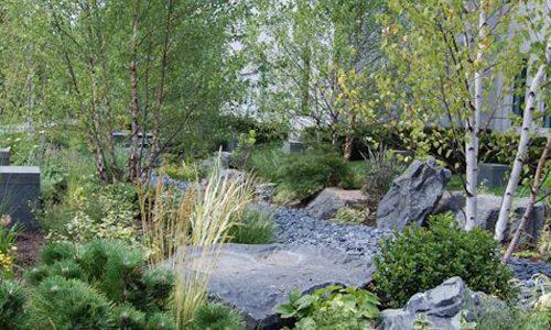 Healing Garden Landscapes