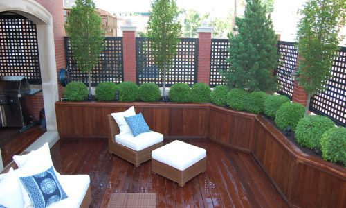 Colorado Setting - Chicago Roof Deck Project