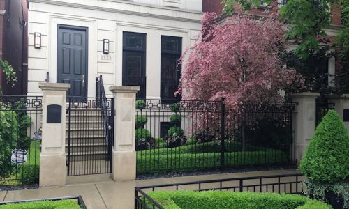 Sculpted Elegance - Chicago Landscaping Project