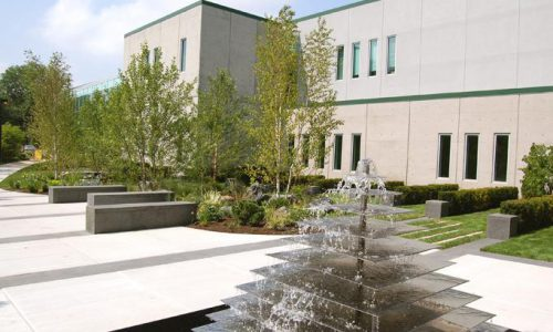 Commercial Landscape Water Feature