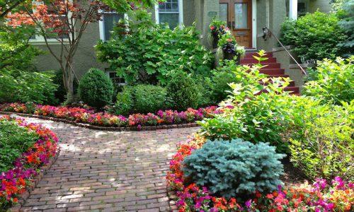 Maintaining a Healthy Garden