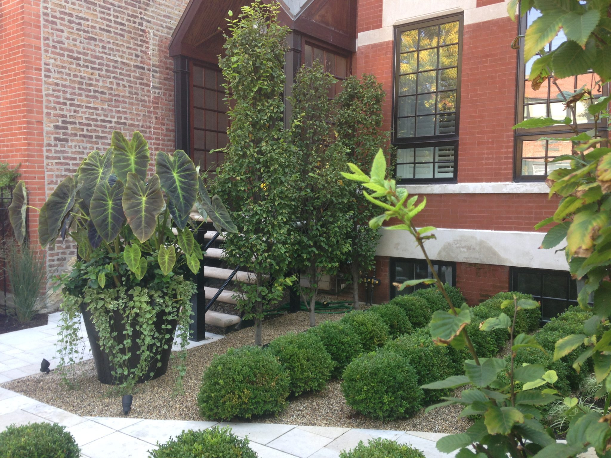 Architecture in Greenery - Chicago Landscaping Project