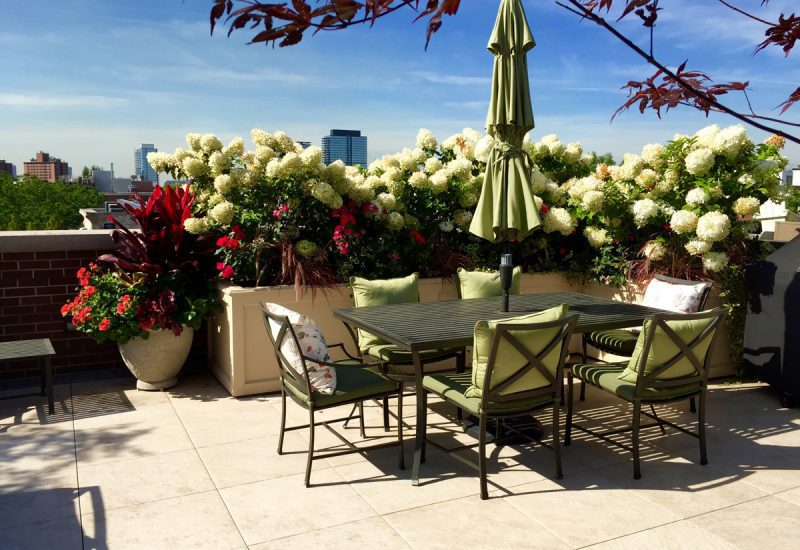 Heaven on Burling - Chicago Roof Deck Project