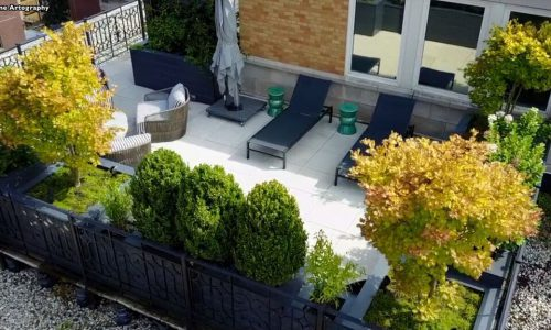 Ambassador Rooftop Design Chicago