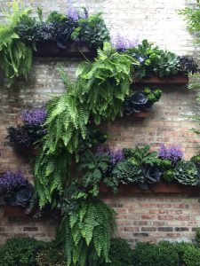 Vertical Gardening - Chicago Wall Garden