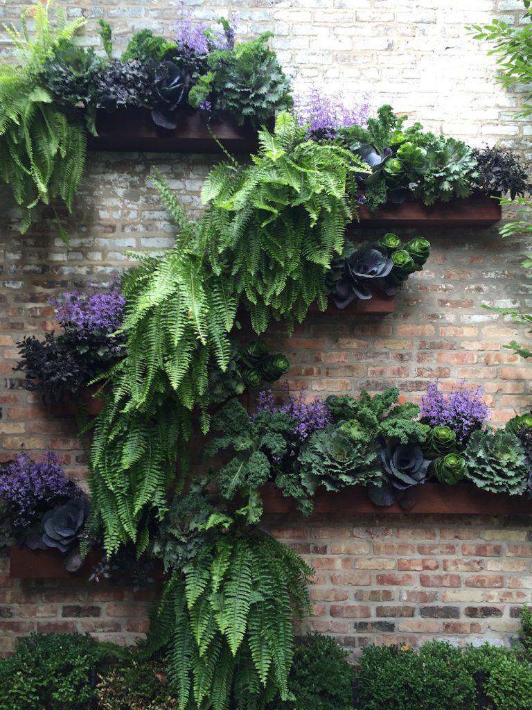 Vertical Gardening - Chicago Wall Garden