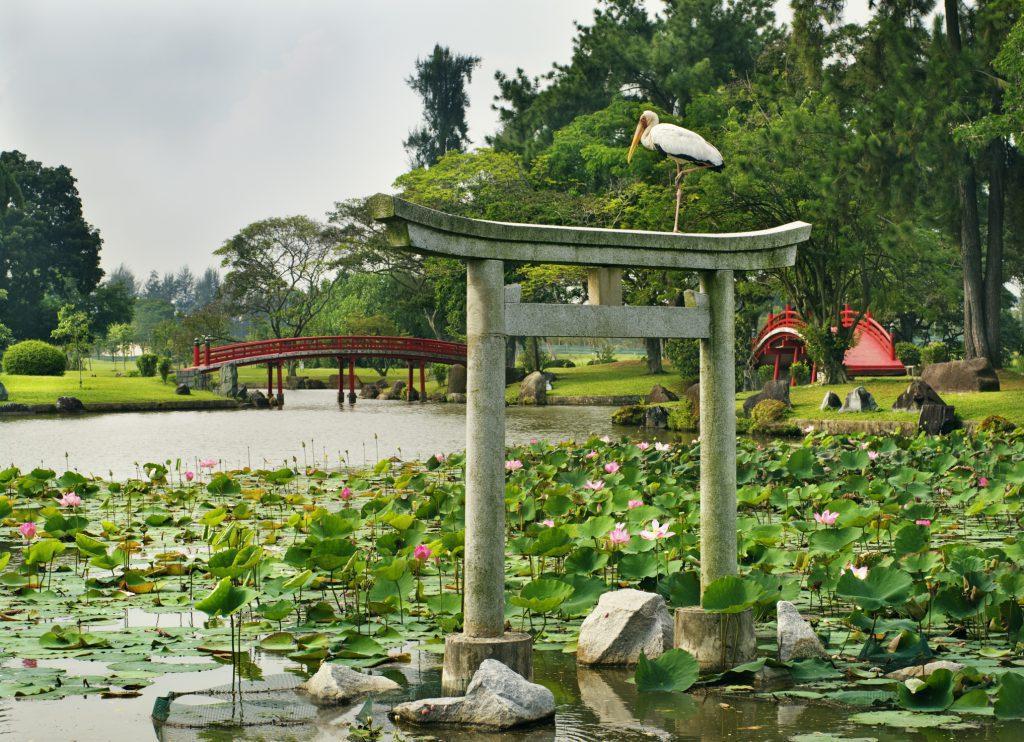 Japanese Garden Landscaping Design