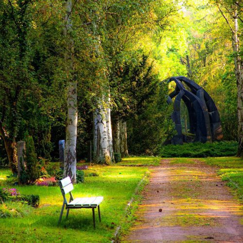 Shade Garden Landscaping Oasis