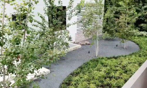 Living on the River - Landscaping Design