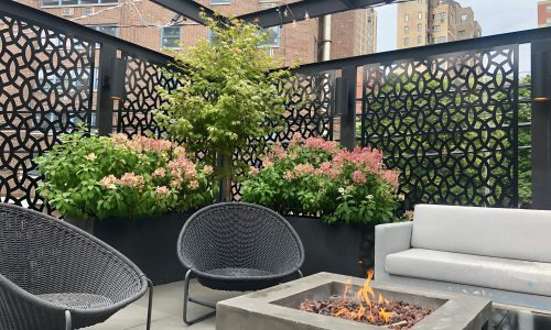 Baker - Botanical Concepts Chicago Rooftop Design